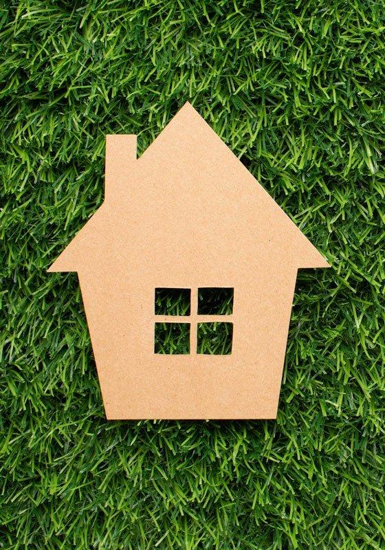 house-grass